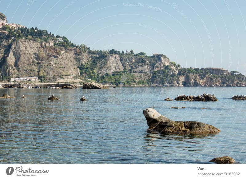 Seal Rock Vacation & Travel Nature Landscape Water Cloudless sky Beautiful weather Hill Coast Ocean Island Sicily Blue Colour photo Subdued colour Exterior shot