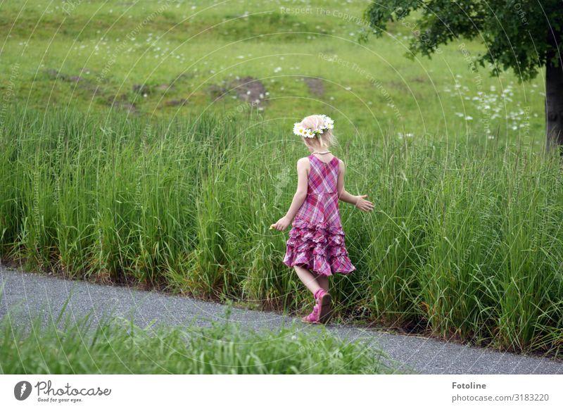 Child Human being Nature Summer Plant Landscape Hand Tree Flower Girl Legs Environment Feminine Meadow Grass Small