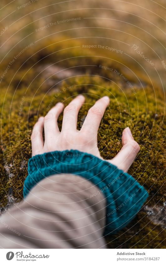Woman hand on moss Hand Touch Moss Stone Rural Freedom Vacation & Travel Adventure Nature Rest Trip Leisure and hobbies Lifestyle Tourist Wild Environment Plant