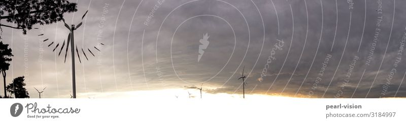 wind time Wind energy plant Environment Nature Clouds Climate change Weather Clock face Time Colour photo Exterior shot Copy Space right Copy Space top Evening