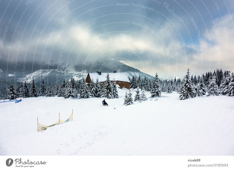 Winter in the Giant Mountains near Spindleruv Mlyn, Czech Republic Relaxation Vacation & Travel Tourism Winter vacation Hiking House (Residential Structure)