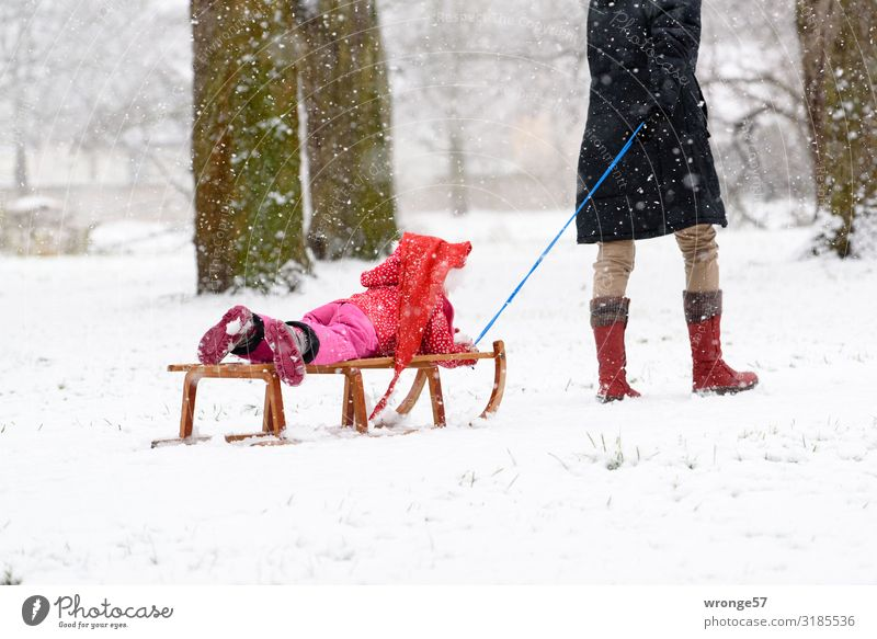 snow from yesterday Winter Snow Human being Feminine Child girl Woman Adults Female senior Grandmother 2 3 - 8 years Infancy 45 - 60 years 60 years and older
