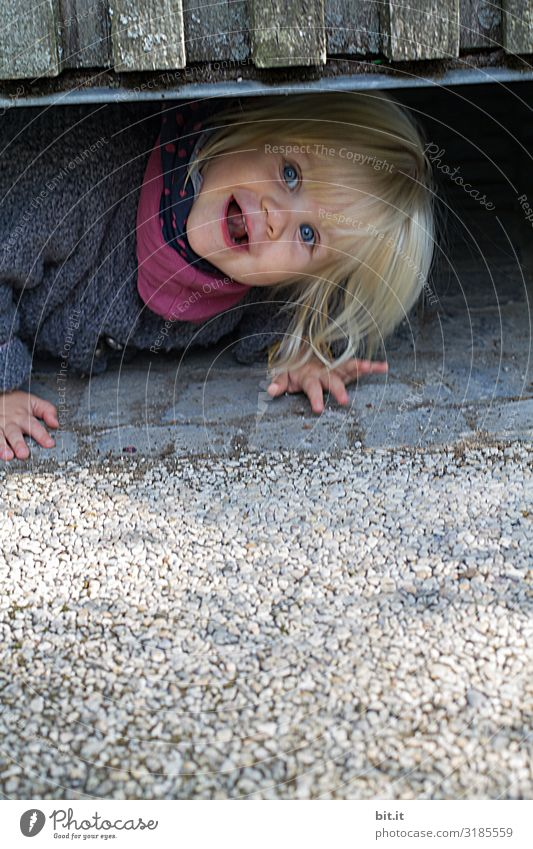 Little, cheeky, sweet, roll-eyed girl looks curious, interested, funny under a fence. Blond funny toddler plays hide and seek. Excursion in the city, toddler lies on the grey ground with cobblestones, stones and wooden wall.