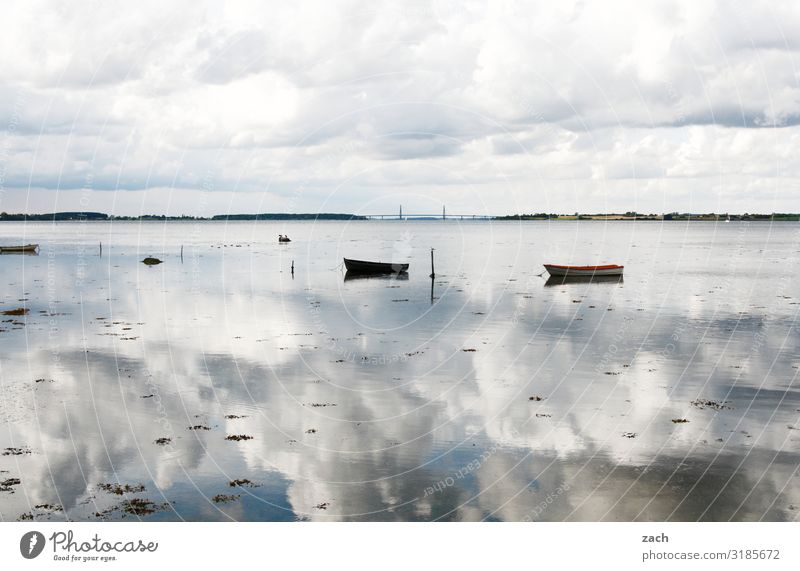 farsighted | 100% cloudy Landscape Water Sky Clouds Coast Lakeside Fjord Baltic Sea Ocean Island Denmark Boating trip Fishing boat Rowboat Swimming & Bathing