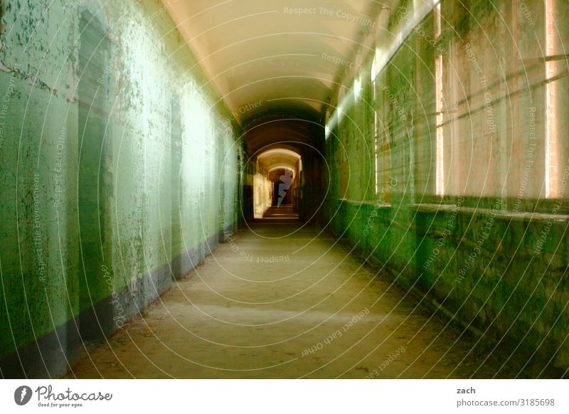 blurred | Zoom Living or residing Flat (apartment) House (Residential Structure) Redecorate Interior design Room Hallway Ruin Wall (barrier) Wall (building)