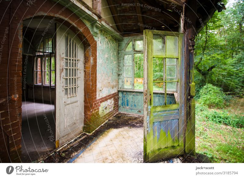 Green at the door of a ruin Architecture lost places Summer tree Meadow Brandenburg Ruin Villa Sanitarium Terrace Roof Authentic Dirty Elegant Historic Broken