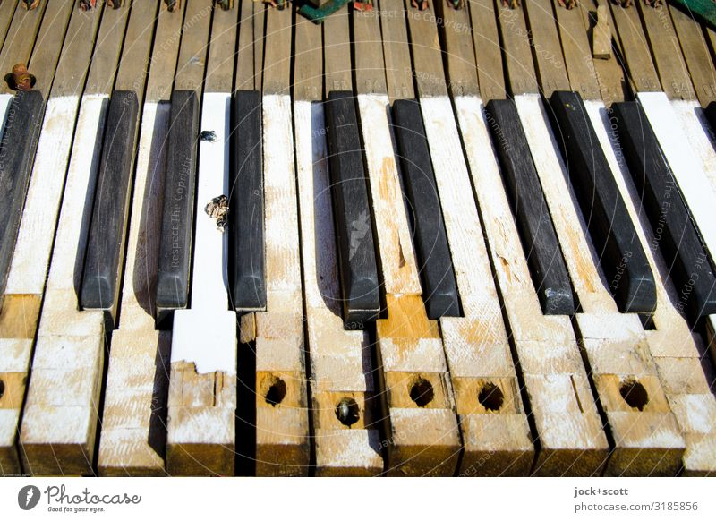 Tones key by key lost places Piano Keyboard Decoration wood Stripe Surface Surface structure Old Dirty Sharp-edged Historic Broken Black White Moody Refrain