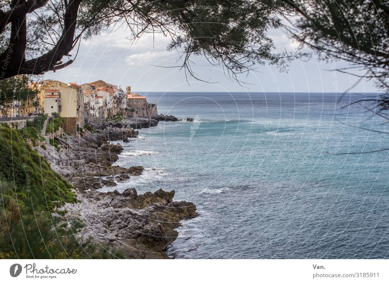 Cefalù² Vacation & Travel Far-off places Nature Landscape Water Sky Clouds Summer Beautiful weather Tree Branch Rock Waves Coast Ocean Cefalú Sicily Italy