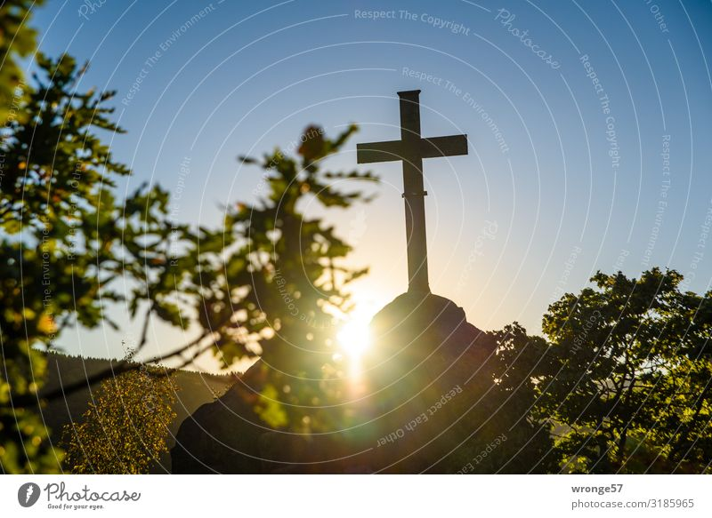 Sunset at the Ilsestein Landscape Sky Cloudless sky Sunrise Sunlight Beautiful weather Tree Rock Mountain Harz Stone Metal Sign Crucifix Historic Tall Above