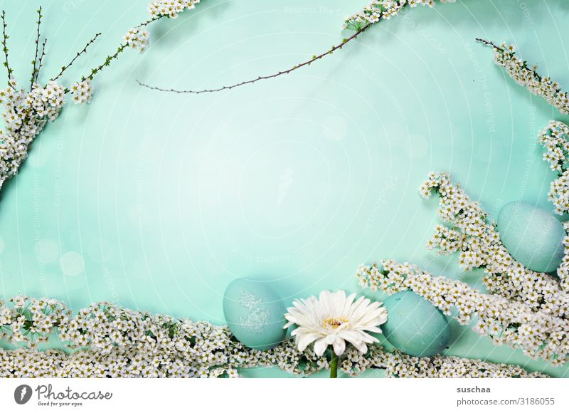 oh, you cheerful .. Easter Easter egg Bushes Twig Blossom Spring Green Turquoise Blue Cyan Flower Background picture Copy Space middle Beautiful Fashioned