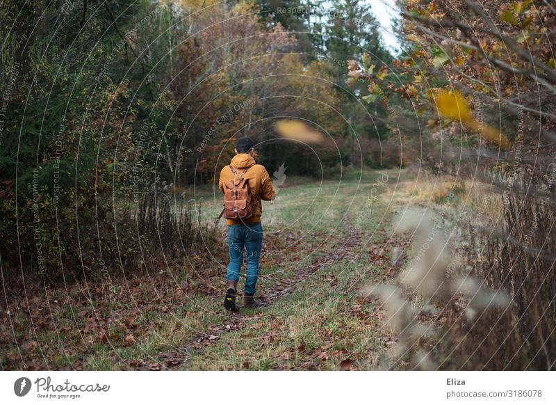 A man walking alone in the woods Human being To go for a walk Young man Self-isolation Youth (Young adults) Man Adults by oneself 18 - 30 years