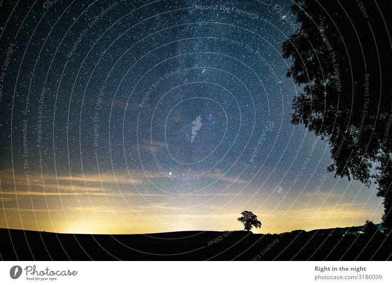 into the night Nature Landscape Sky Cloudless sky Night sky Stars Horizon Summer Tree Field Esthetic Contentment Uniqueness Peace Mysterious Idyll Inspiration