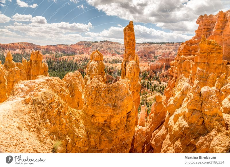 Panoramic view over Bryce Canyon Utah Vacation & Travel Mountain Nature Landscape Sky Park Rock Monument Stone Gold Red Serene bryce point national desert