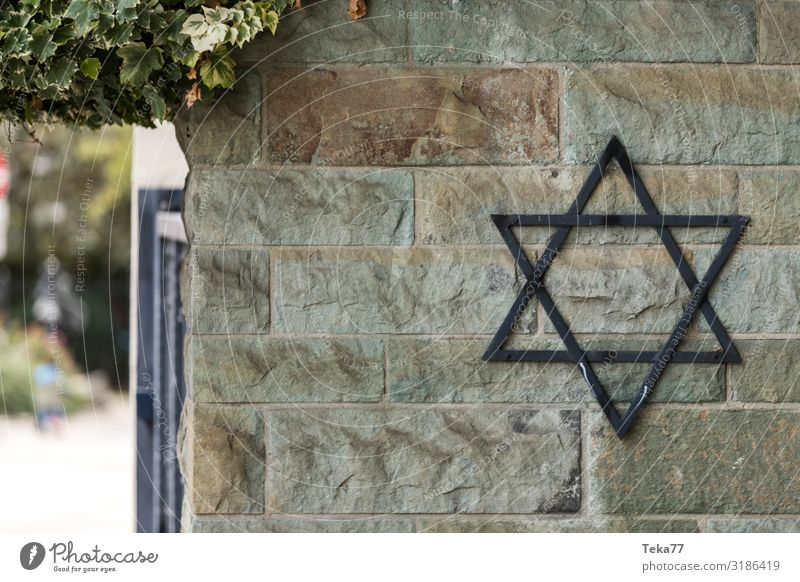 The Jewish cemetery Sign Ornament Signs and labeling Signage Warning sign Senior citizen Judaism Star of David Jews Cemetery Colour photo Exterior shot