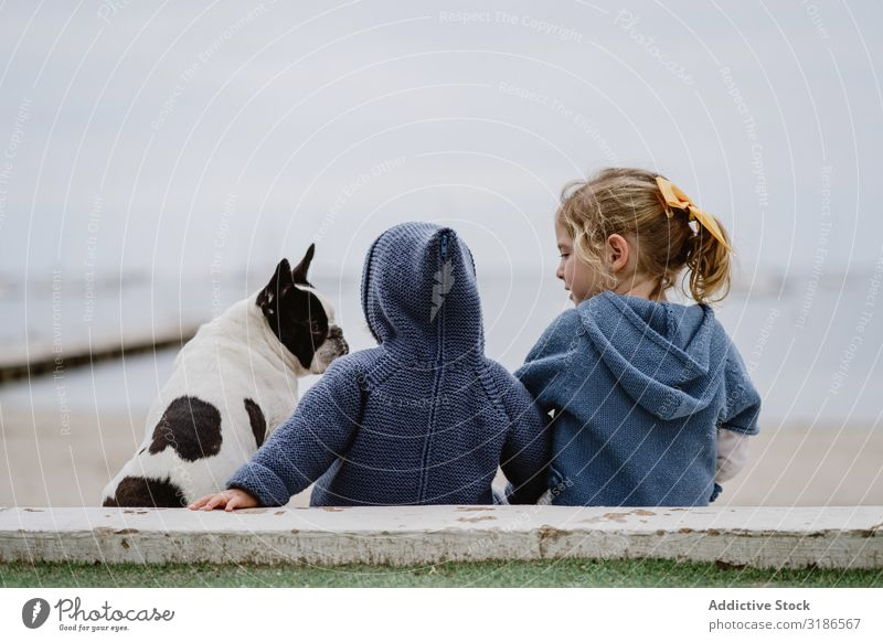 Kids hugging dog on beach Child Dog Beach Friendship Love Embrace Pet Ocean Sit Obedient Baby french bulldog Easygoing Lifestyle Leisure and hobbies embracing