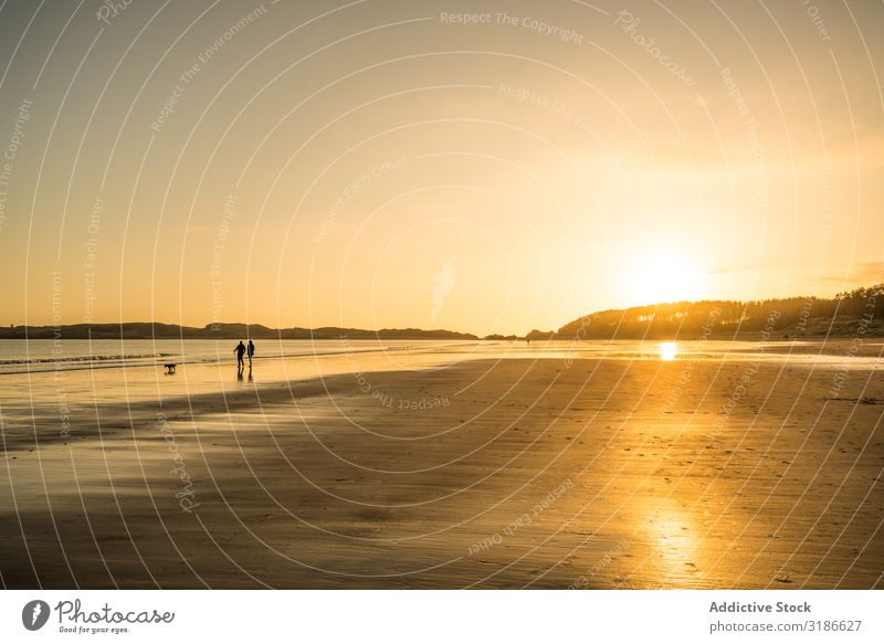 unrecognizable couple walking on beach at sunset Human being Sand Beach Water Sunset Amazing Walking