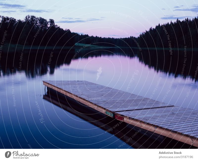 Wooden planked footway in calm evening lake Landscape Lake Nature Water Vacation & Travel Tourism Leisure and hobbies Beautiful Forest Park Blue Sky Summer