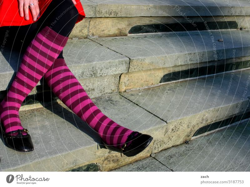 Stairs with socks Human being Feminine Young woman Youth (Young adults) Woman Adults Legs 1 Sit Gray Colour photo Exterior shot Copy Space middle Day