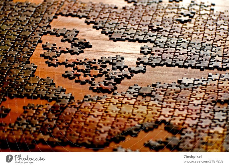 Jigsaw Leisure and hobbies Playing Puzzle Brown Yellow Gold Joy Colour photo Multicoloured Interior shot Deserted Artificial light Shallow depth of field