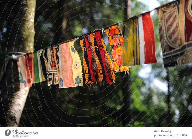 Belgian prayer flags Prayer flags Optimism Wisdom Belief Colour Religion and faith Hope Inspiration Buddhism Colour photo Exterior shot Sunlight Back-light