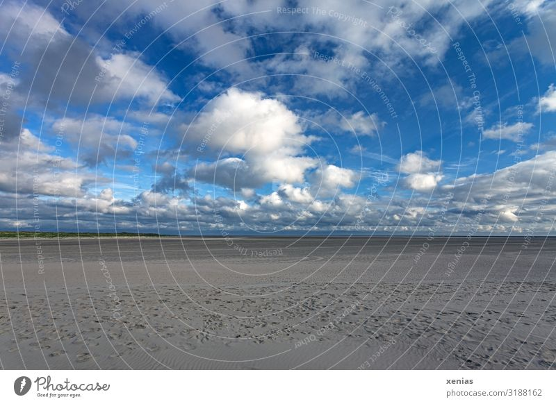Wide beach with clouds in front of a blue sky Vacation & Travel Nature Landscape Sky Clouds Horizon Climate Weather Beautiful weather Coast Beach Infinity Blue
