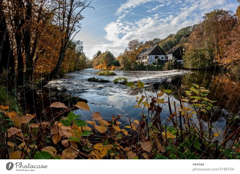 Sky Vacation & Travel Nature Landscape Tree Autumn Germany Beautiful weather River Tourist Attraction Autumnal colours Hydroelectric  power plant Wupper