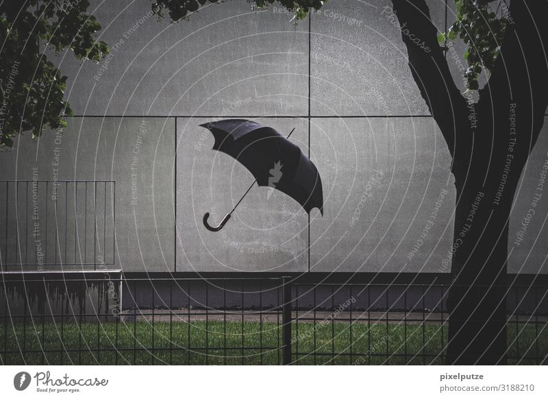 Town Dark Architecture Wall (building) Building Garden Wall (barrier) Exceptional Flying Rain Weather Wind Crazy Wet Umbrella Storm