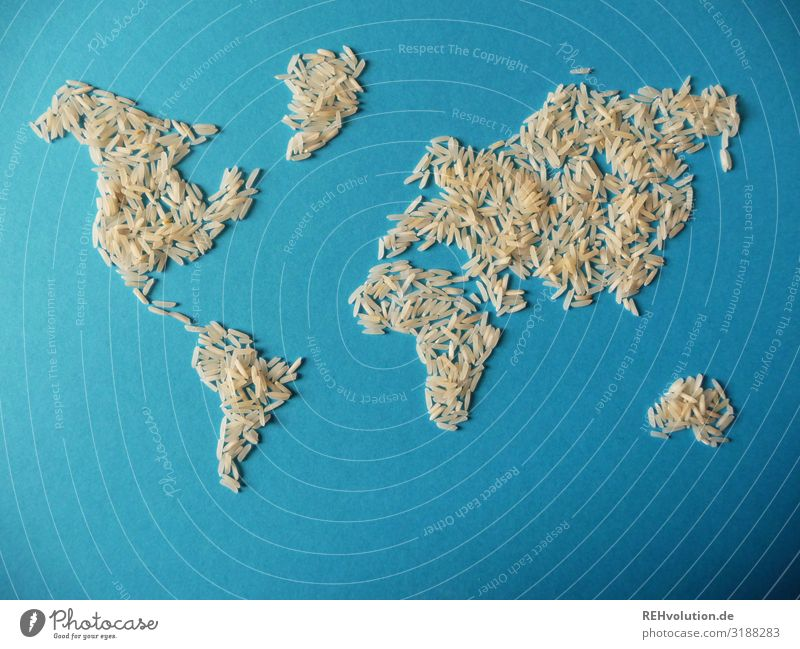 Rice world map Globe Environment Resource Map of the World Continents Appetite Needy Eating Food Earth Planet Blue Paper Graphic Abstract Idea Creativity