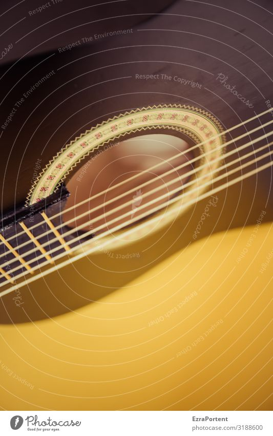 Strings of a plucked instrument Guitar acoustic guitar Musical instrument strings Guitar string partial view background Yellow Brown Acoustic Sound wood