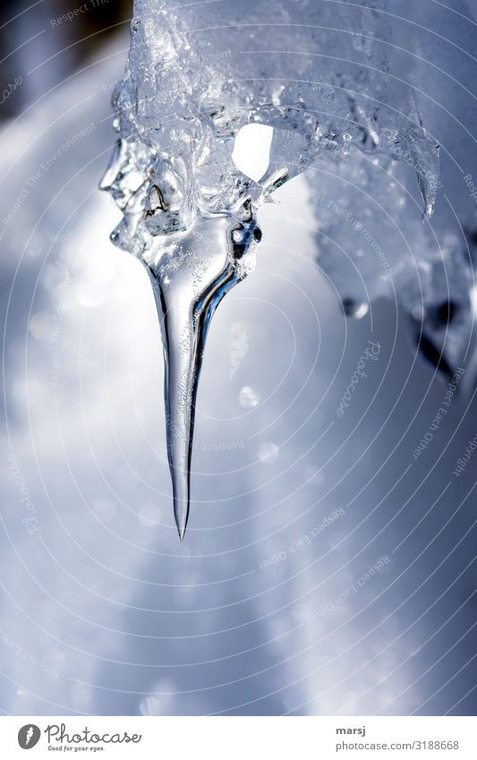 Cold Natural Ice Power Point Frost Frozen Hang Icicle
