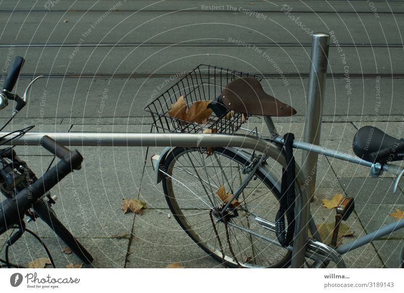 Cycling with autumn leaves in your luggage Bicycle luggage carrier Luggage rack Parking Bicycle saddle bicycle lock bicycle basket Autumn leaves urban Autumnal