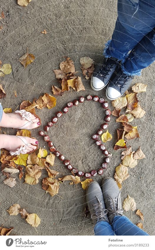 Human being Nature Blue Leaf Legs Autumn Yellow Environment Natural Feminine Feet Brown Sand Earth Footwear Heart
