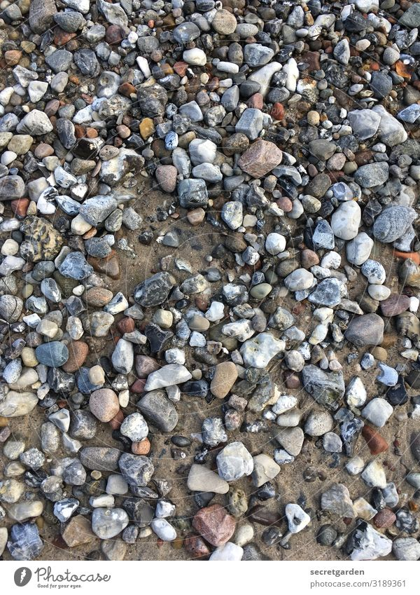 Ouch! Ouch! Ouch! Pebble Gravel beach Gravel pit stones Beach Pattern Graveled Gravel bed variegated Minimalistic Sand prickly Stony stony road Exterior shot