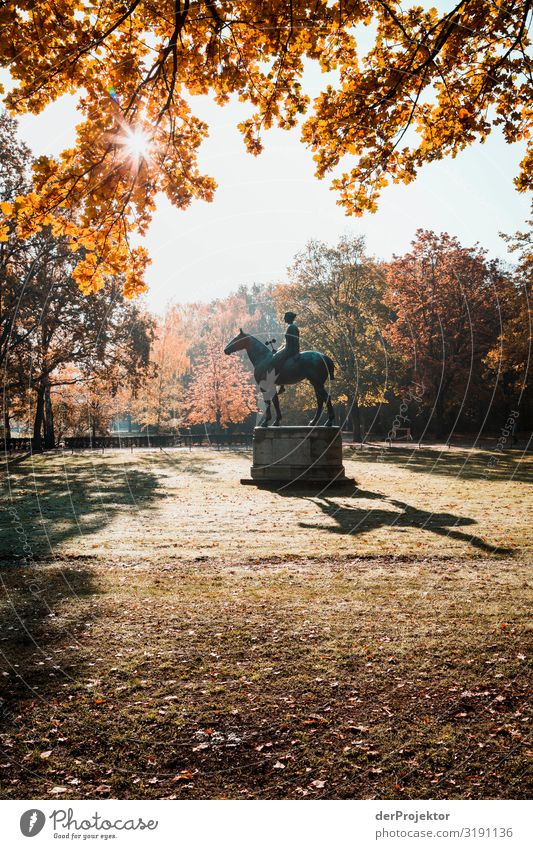 In the Tiergarten: And she rides into the sunrise Vacation & Travel Tourism Trip Far-off places Freedom Sightseeing City trip Environment Autumn