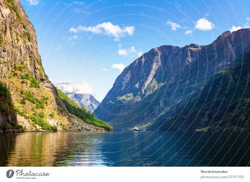 Aurlandsfjord Vacation & Travel Tourism Trip Far-off places Cruise Summer Summer vacation Ocean Nature Landscape Elements Water Sky Clouds Beautiful weather