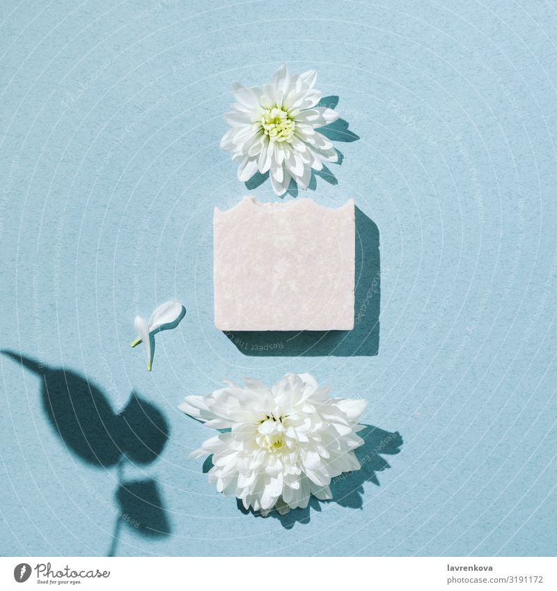 Minimalist flatlay of handmade soap with flowers and petals bars Swimming & Bathing Bathroom Beauty Photography Blossom Body Personal hygiene Chrysanthemum
