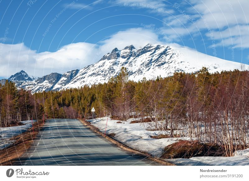 Spring in Lofoten Vacation & Travel Tourism Adventure Freedom Mountain Nature Landscape Climate Beautiful weather Snow Tree Forest Rock Peak Snowcapped peak