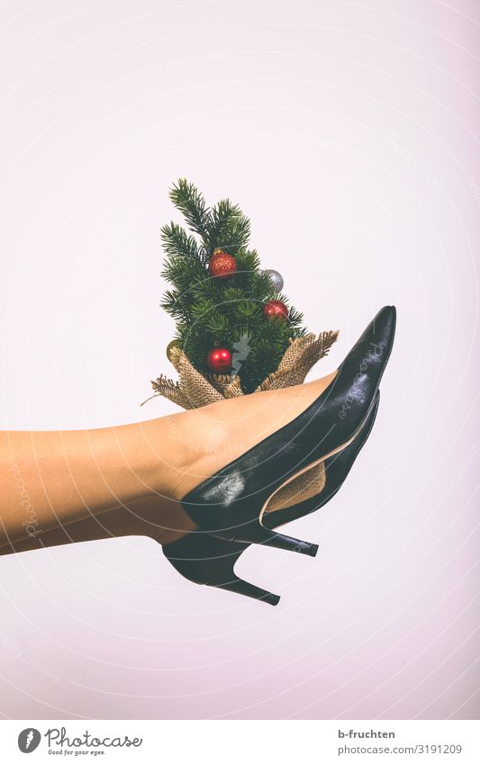 Small Christmas Tree Lifestyle Style Joy Leisure and hobbies Flat (apartment) Feasts & Celebrations Christmas & Advent Tights Footwear High heels Touch Movement