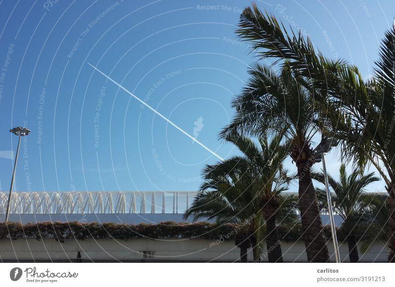 depart Airplane Airplane landing Vacation & Travel Tourism Majorca Airport Palma de Majorca Ballermann bachelor party