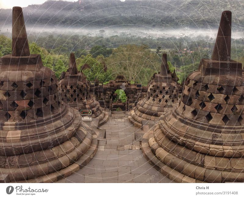 Borobodur Yogyakarta Indonesia Asia Dome Castle Ruin Manmade structures Building Architecture Wall (barrier) Wall (building) Tourist Attraction Landmark
