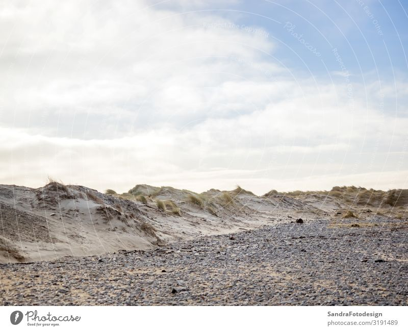 Dune landscape on the island Helgoland Relaxation Vacation & Travel Trip Beach Nature Sand Hiking tideland adventure beautiful clouds coast Dunes ecology