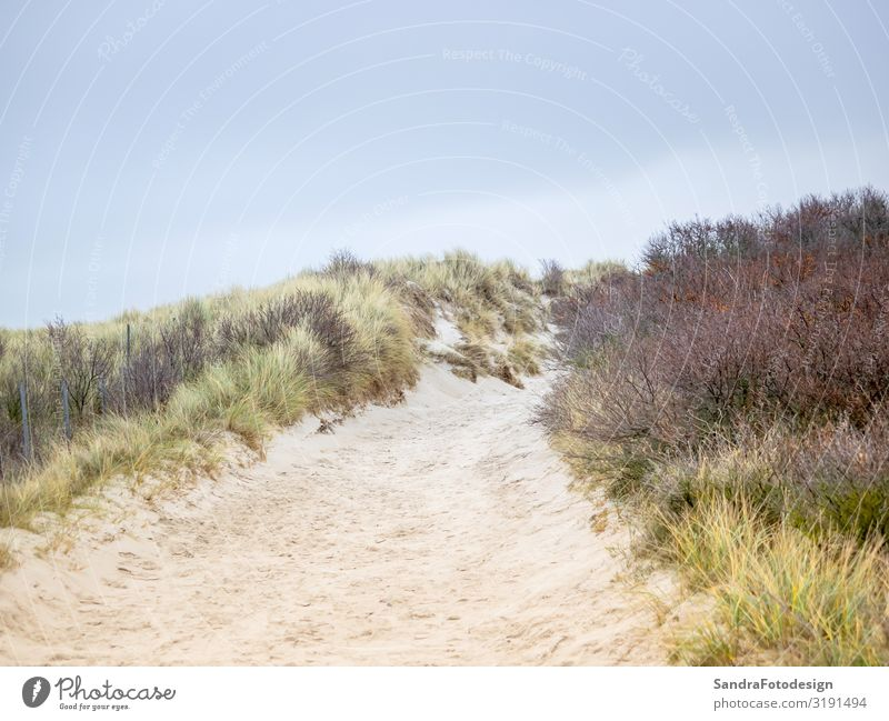Dune landscape on the island Helgoland Relaxation Vacation & Travel Beach Nature Sand Hiking tideland adventure beautiful clouds coast Dunes ecology environment