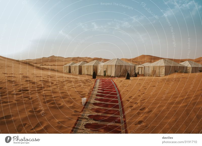 Desert landscape and camp with tents between dunes Vacation & Travel Tourism Trip Adventure Camping Summer Mountain Hiking House (Residential Structure) Nature