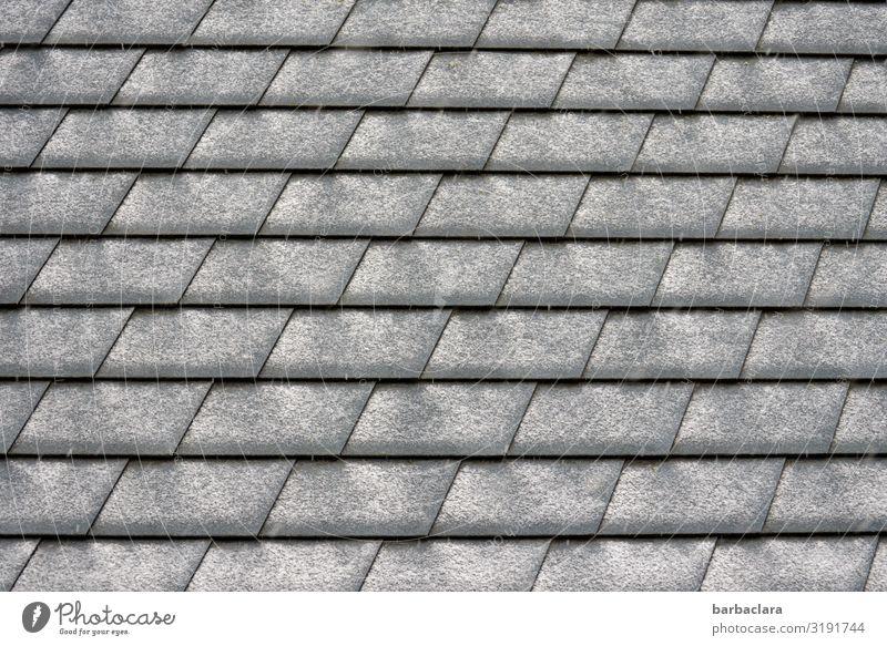 snow pattern Winter Snow Roof Roofing tile Line Stripe Gray Black White Design Climate Arrangement Protection Subdued colour Exterior shot Close-up Detail