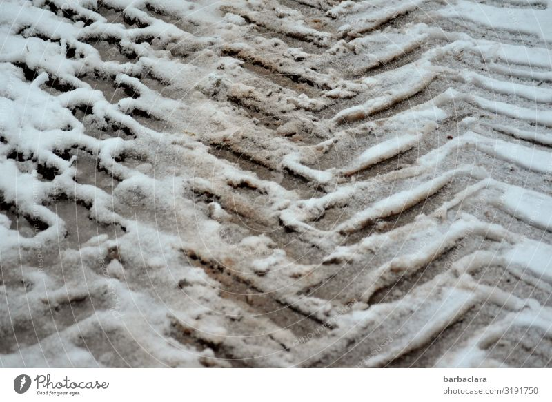 tire tracks in the snow Winter Ice Frost Snow Lanes & trails Vehicle Tractor Line Stripe Skid marks Sharp-edged Cold Gray White Design Climate Mobility Nature