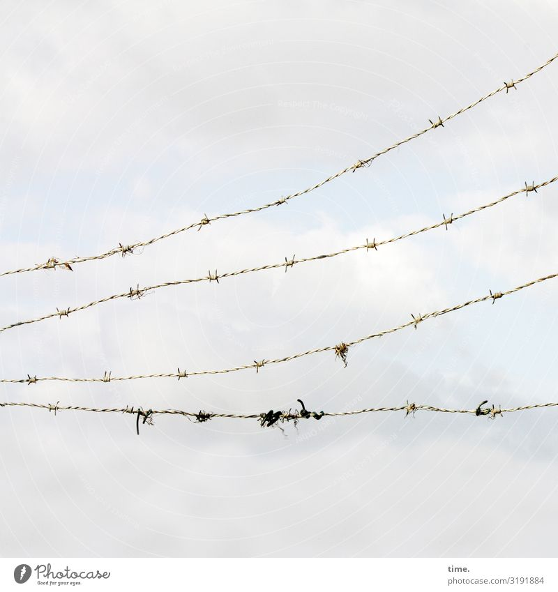 Stories of the fence (XLVI) Sky Clouds Barbed wire Barbed wire fence Line Exceptional Creepy Broken Thorny Safety Protection Watchfulness Flexible Life