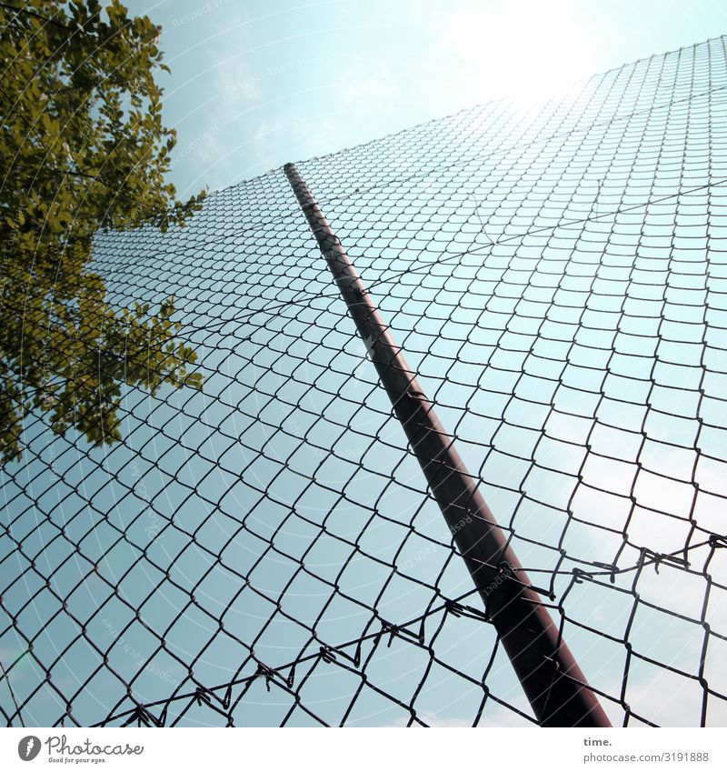 Stories of the fence (XLIX) Sporting Complex Sky Clouds Beautiful weather Tree Fence Fence post Wire netting Wire netting fence Line Network Hot Bright Safety