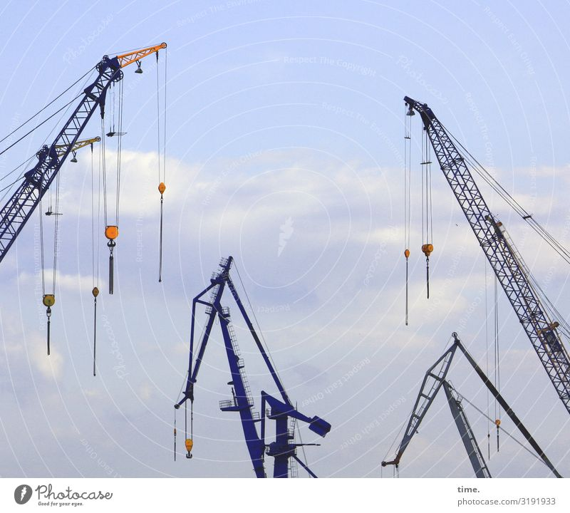 City giraffes (5) Work and employment Workplace Economy Logistics Services Technology Industry Sky Clouds Beautiful weather Crane Metal hang conceit Maritime