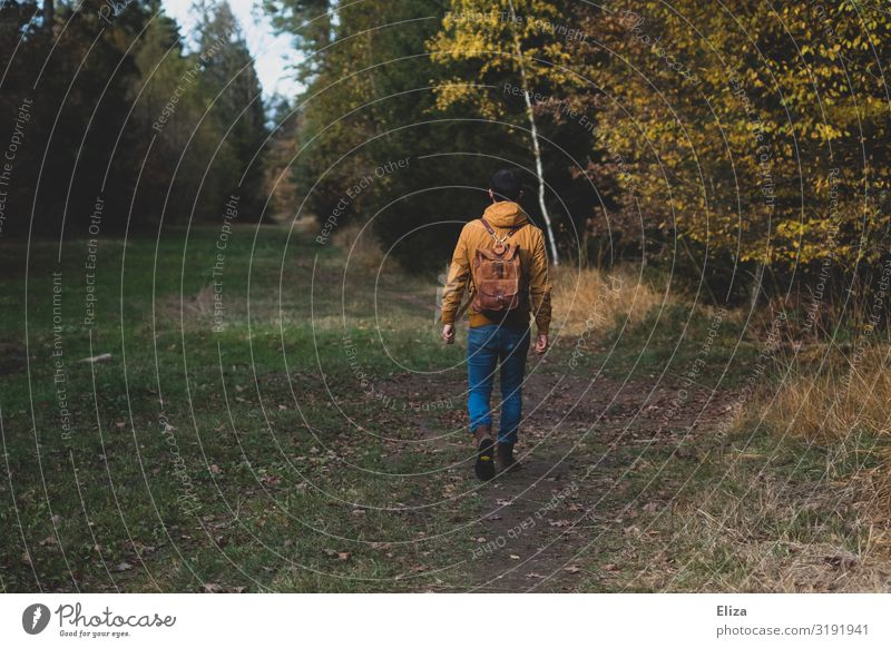 A man alone on an autumn walk through the forest Forest To go for a walk by oneself stroll Trip Nature Autumn huts Backpack Hiking Human being fresh air