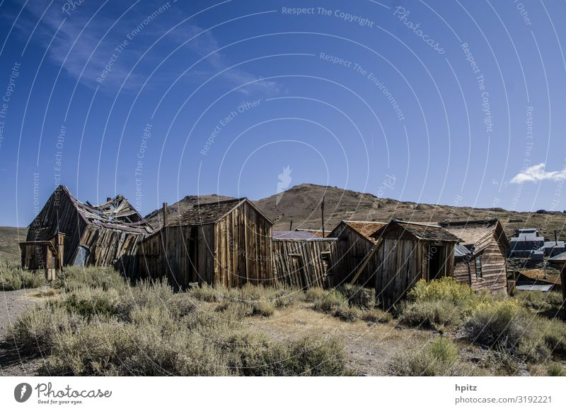 body Landscape Beautiful weather Deserted House (Residential Structure) Ruin Tourist Attraction Wood Old Historic Blue Brown Yellow Mysterious Decline